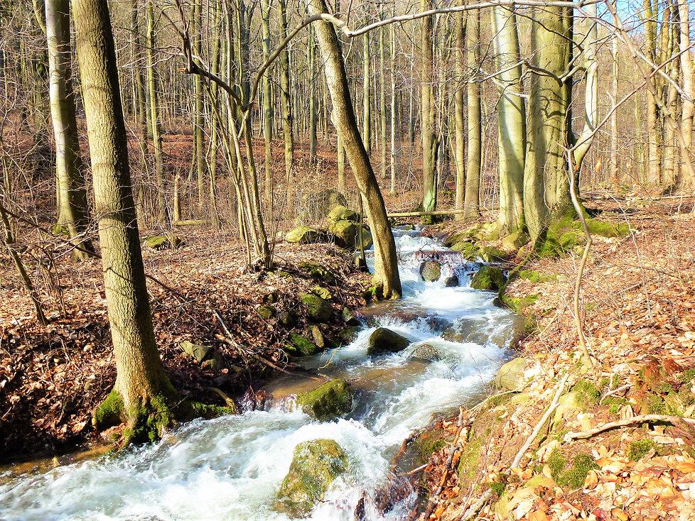 Domaslavické údolí (VP).JPG