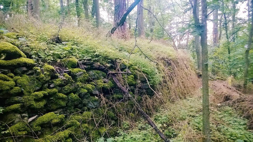 Zbořené hradby hradu Pušperk.jpg