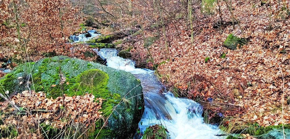 Tok Albrechtického potoka