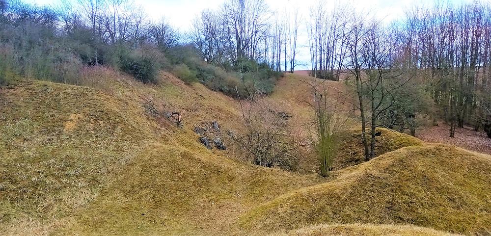 Devonské vápence v Národní přírodní památce Na Skále