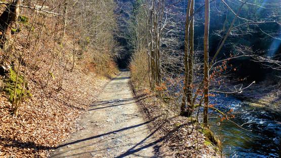 Procházka údolím řeky Bystřice