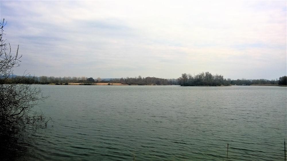 Přírodní památka Chomoutovské jezero