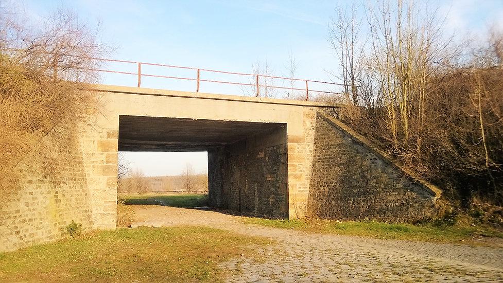 Duchcovský_viadukt.jpg