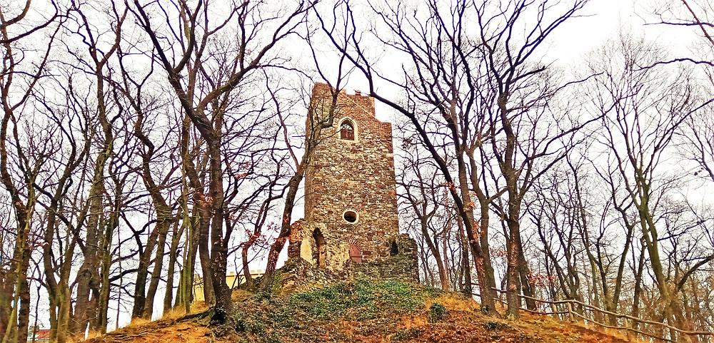 Vyhlídková věž Na Cibulce pochází z počátku 19. století a  je nejstarší pražskou rozhlednou