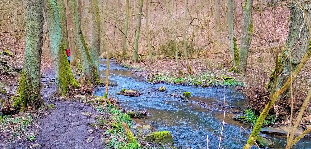 V těchto místech vstupuje Radotínský potok do prostoru stejnojmenné přírodní rezervace