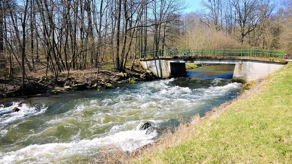 Národní přírodní rezervace Ramena řeky Moravy
