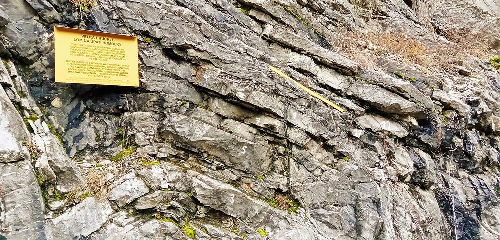 V lomu Vápenice na Homolce najdeme speciálně vyznačený mezinárodní stratotyp mezi vrstvami prag a lochkov