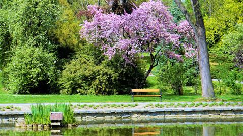 Lavička, která vybízí k posazení - arboretum Bílá Lhota