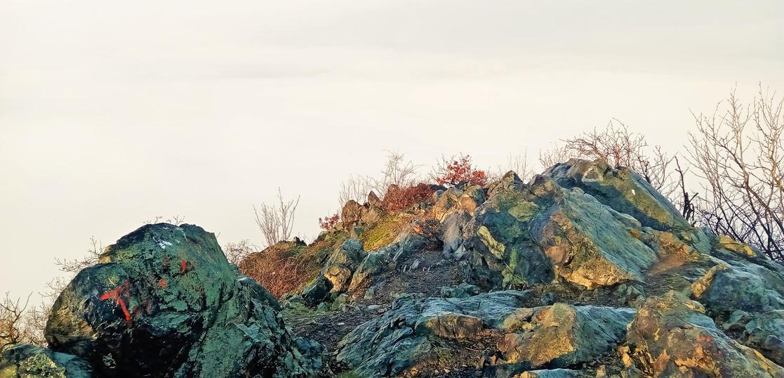 Galerie: Národní přírodní rezervace Zlatník