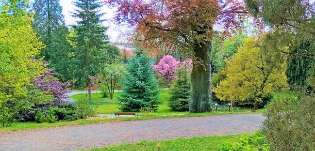 Množství barevných odstínů vás v bělolhotském arboretu až překvapí