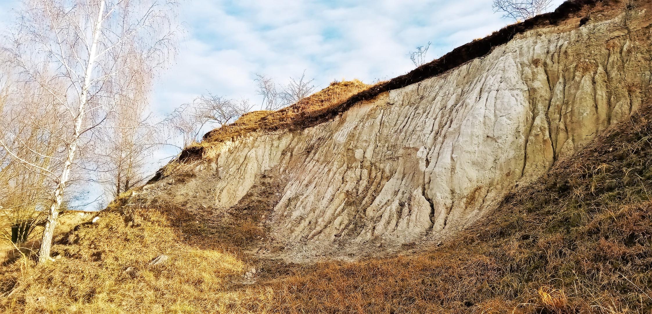 Přírodní rezervace Písečný vrch
