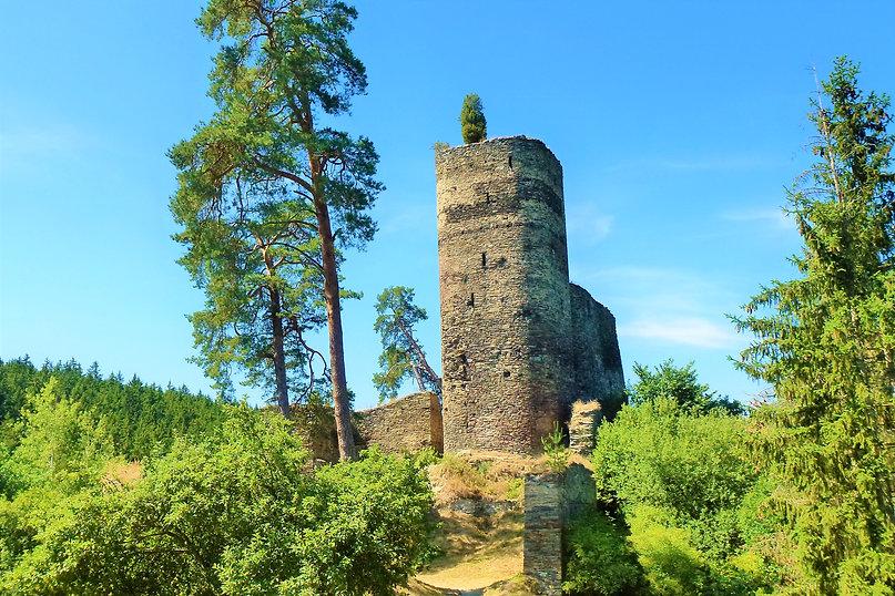 Zřícenina hradu Gutštejn (VP).JPG