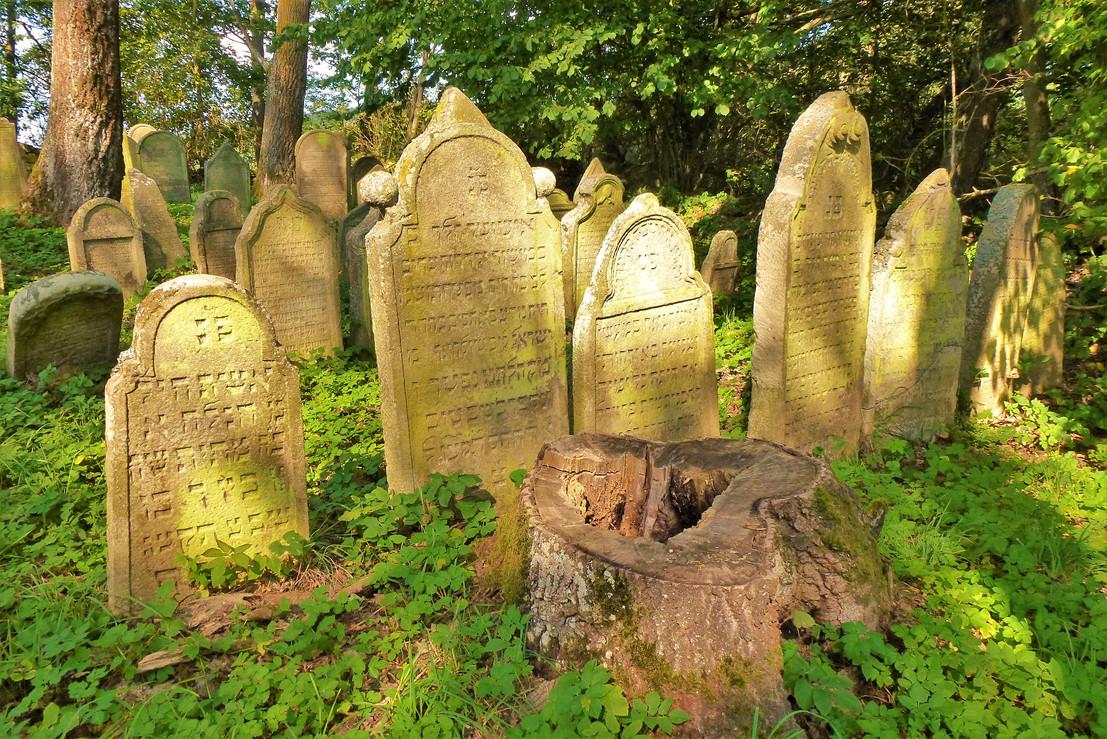 Galerie: Unikátní židovský hřbitov Nové Sedliště