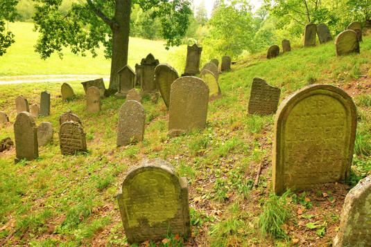 Galerie: Židovský hřbitov v Chodové Plané