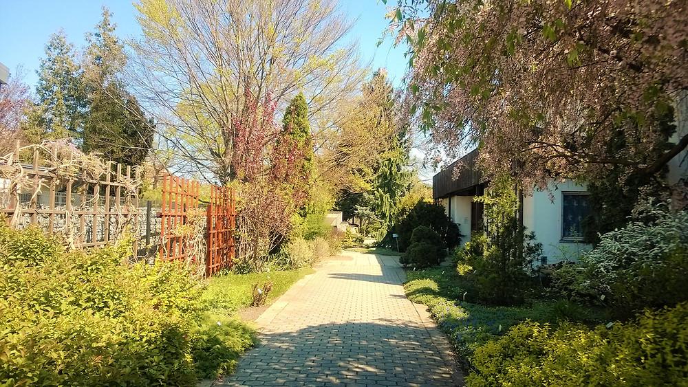 Botanická zahrada Petra Albrechta v Prostějově