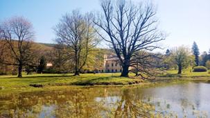 Pohled přes jeden ze zámeckých rybníků na zámek Čechy pod Kosířem