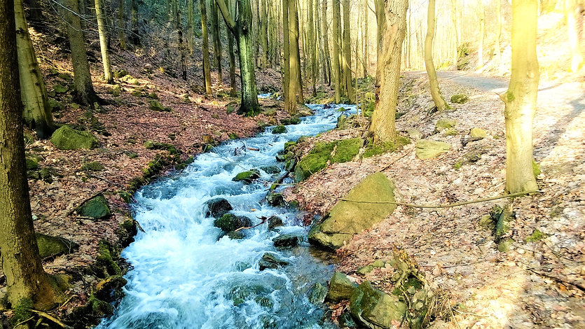 Domaslavické údolí s Domaslavickým potok
