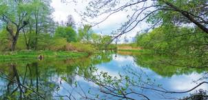 Řeka Morava je tu zklidněná, líná a tiše se plazící mezi travnatými břehy jako čerstvě nažraný had