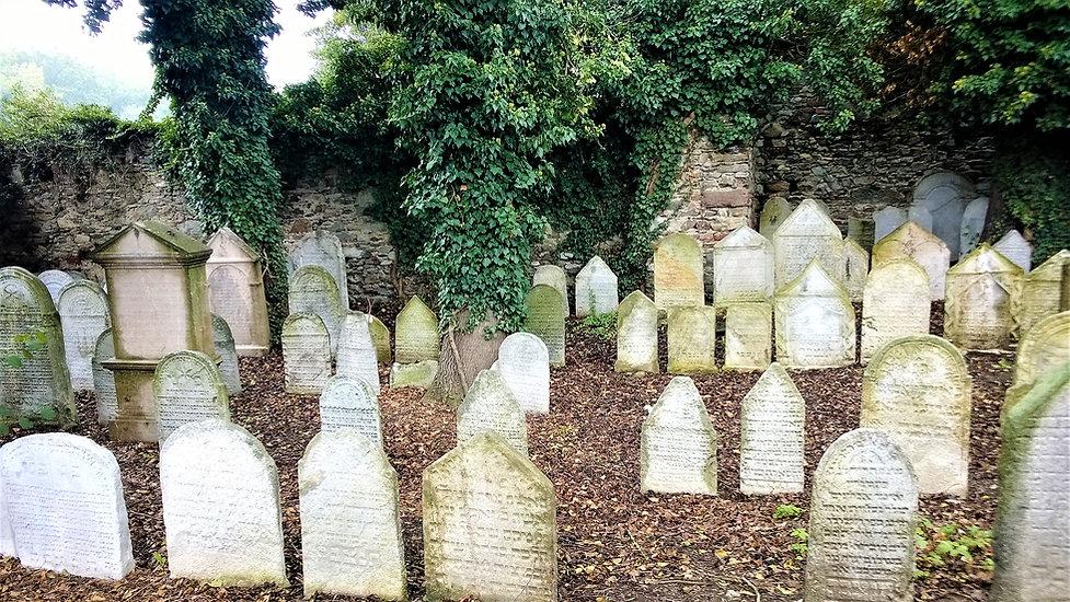 Starý židovský hřbitov v Sušici.jpg