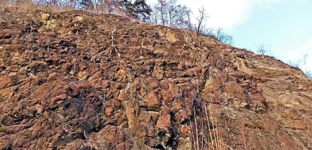 Kde hledat na této skále zkameněliny je jasné - graptoliti tvoří stříbrné pásky na skále v NPP Barrandovské skály
