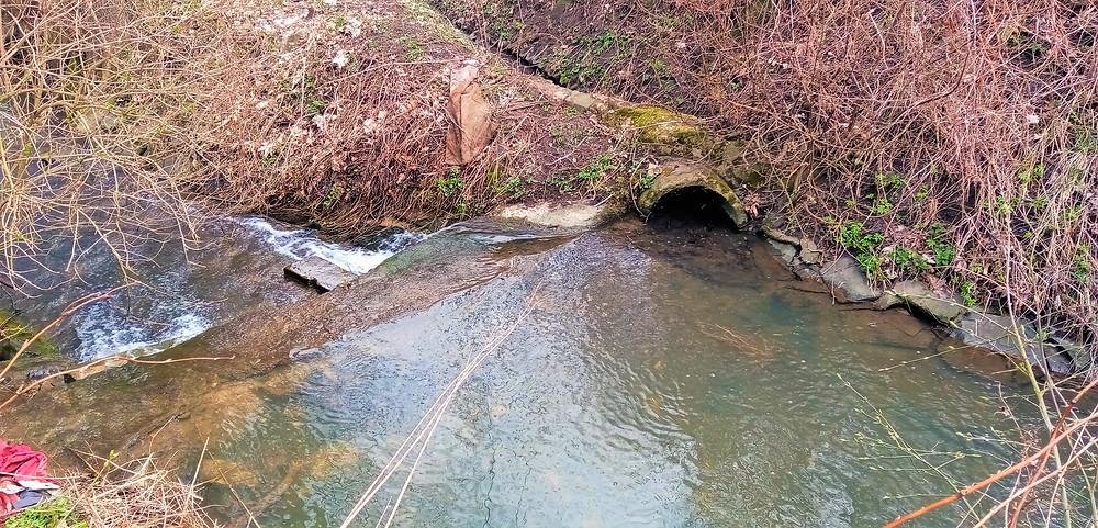 Unikátní bifurkace (rozdělení) vodního toku potoka Dubá na Dubá I a Dubá II