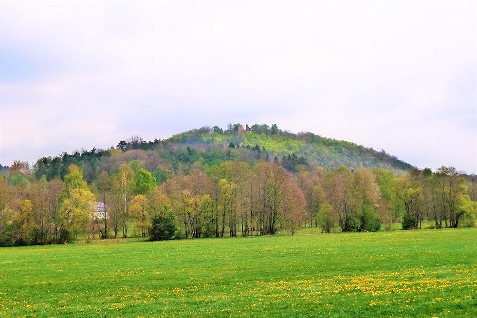 Hradby hradu a zámku Klenová (VP).JPG