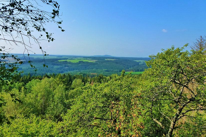Přírodní rezervace Hradišťský vrch (VP).