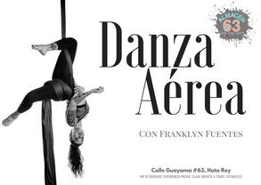 Danza Aerea 2017.png
