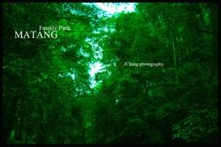 Matang Family Park