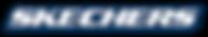 CORP_SKX_DROP-SHADOW_BLU-logo.eps-2_17.7