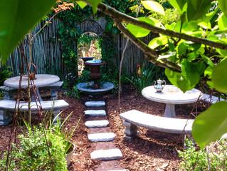 How to garden in Autumn?