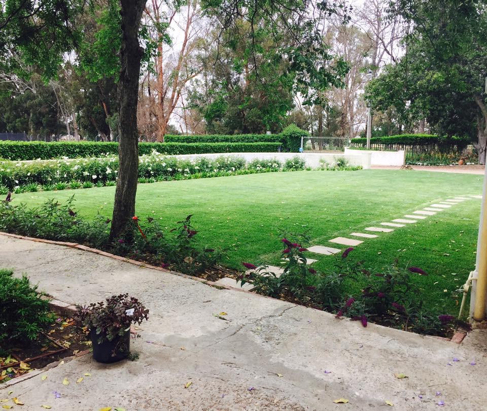 Farm Grass