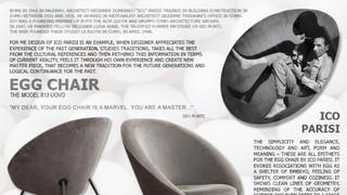 Case Study - Ico Parise Egg Chair