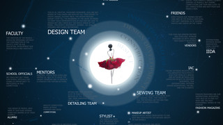 Case Study of design process interrelationships