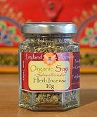Sage Organic Salvea officinalis.jpg