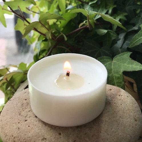 Compostible Vegetable Oil Tea Light Candles