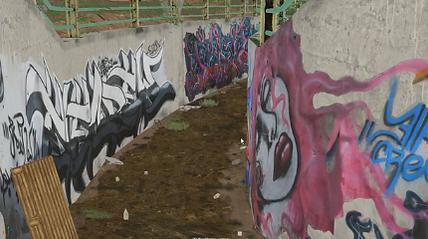 Graffiti Art and Protest in Iran