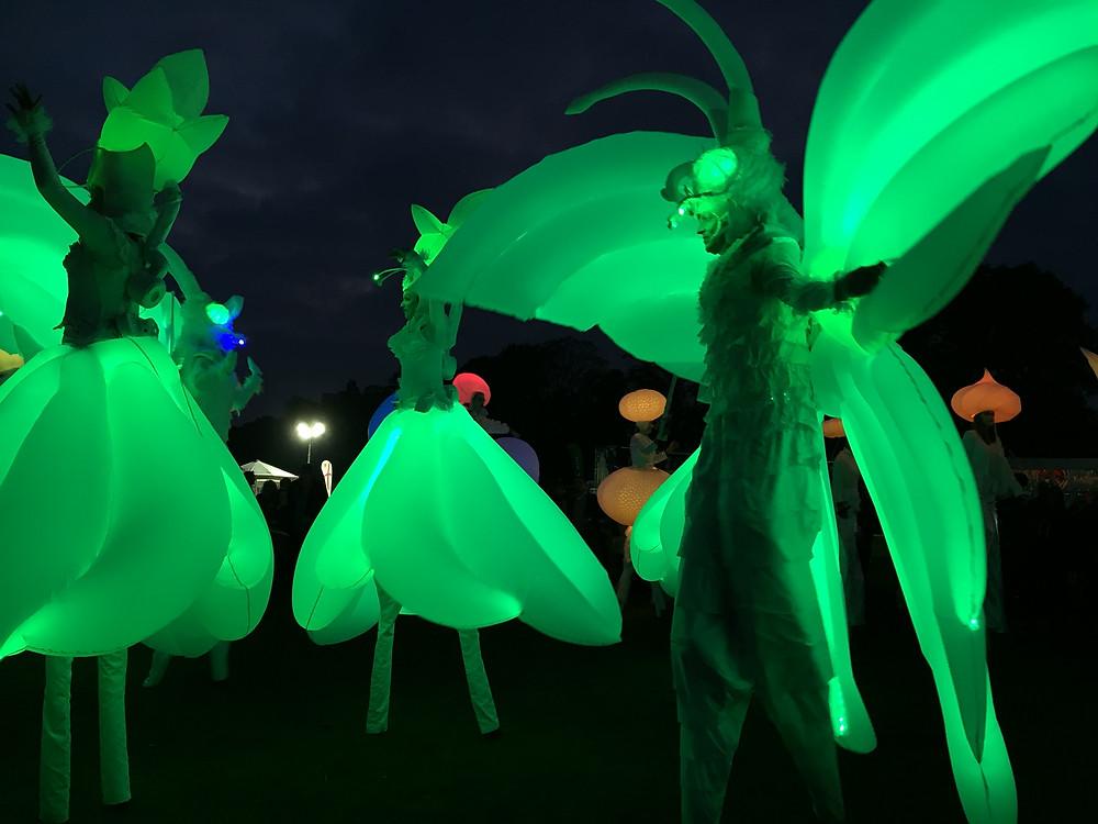 Night Time Lit Carnival