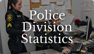 Police Statistics Icon (2).png