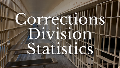 Corrections Statistics Icon.png