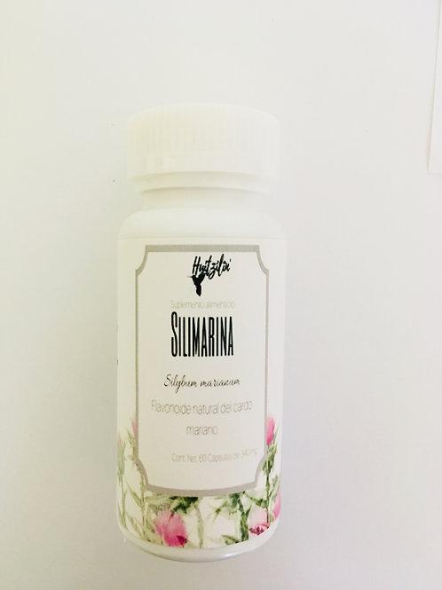 Silimarina : Suplemento alimenticio auxiliar contra el hígado graso