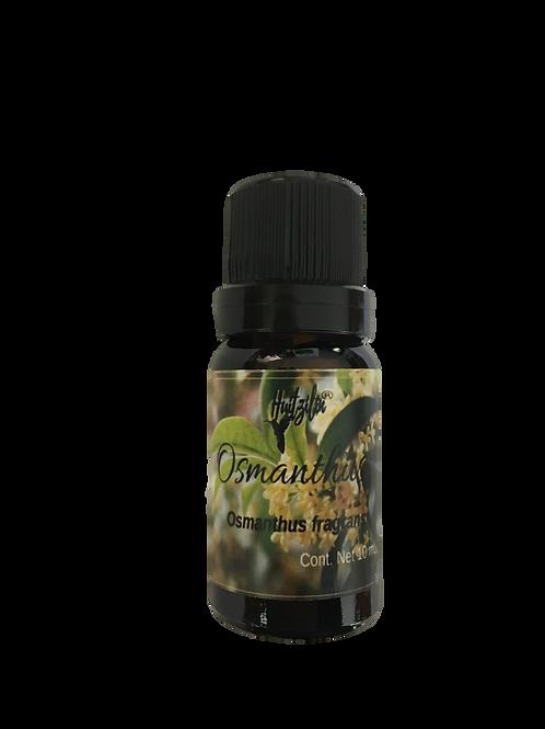 Aceite Esencial de Osmanthus (Osmanthus fragrans)