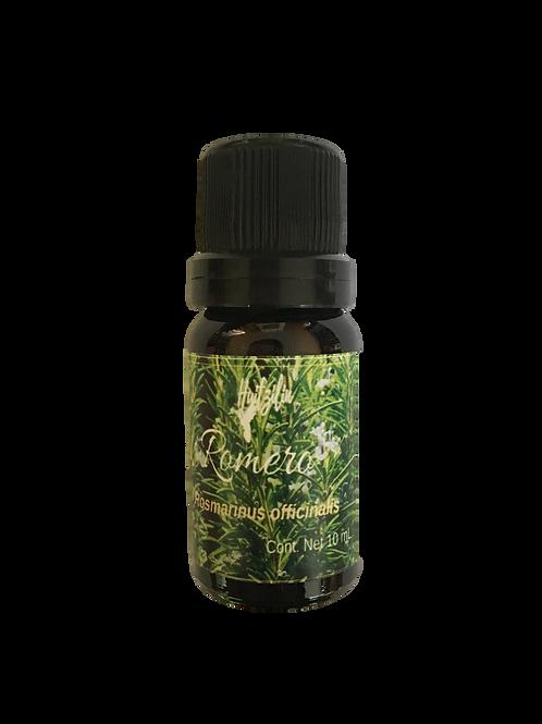 Aceite esencial de Romero (Rosmarinus officinalis)