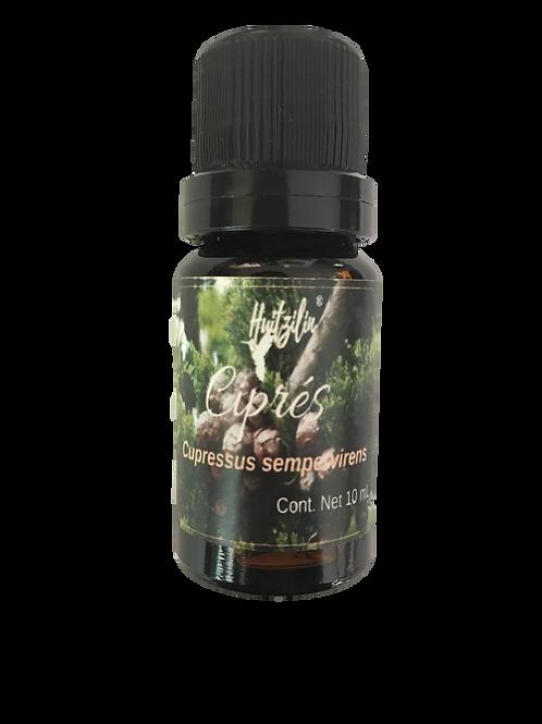 Aceite Esencial de Ciprés (Cupressus sempervirens)