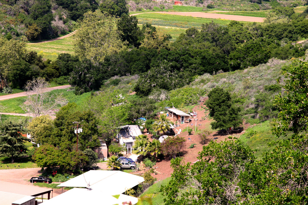 Ellwood Canyon Farms_0887