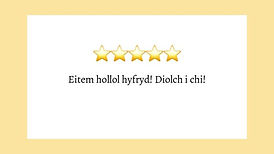 welsh language review