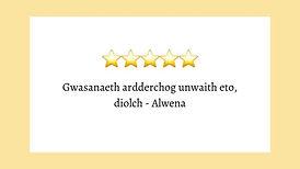 welsh language reviews