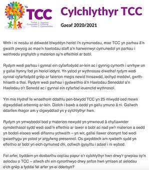 Winter Newsletter (Cymraeg).png
