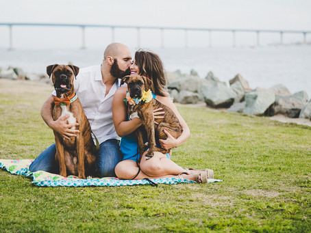 Engagement Session with a Pack