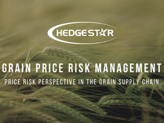 Grain Price Risk Management: Price Risk Perspective in the Grain Supply Chain
